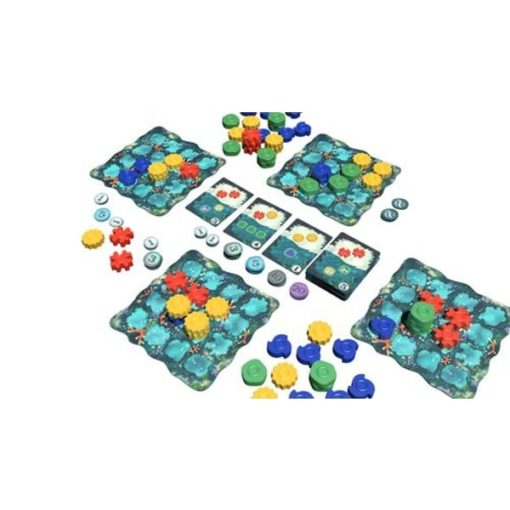 Reef Board Game Layout